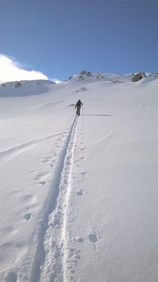 neil-hiking