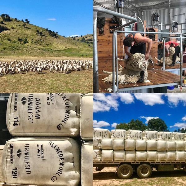 shearing-and-loading-montage